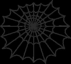 Spinnennetz Kooperationsspiel